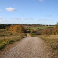Nyd landskabet – tag tid til gåture